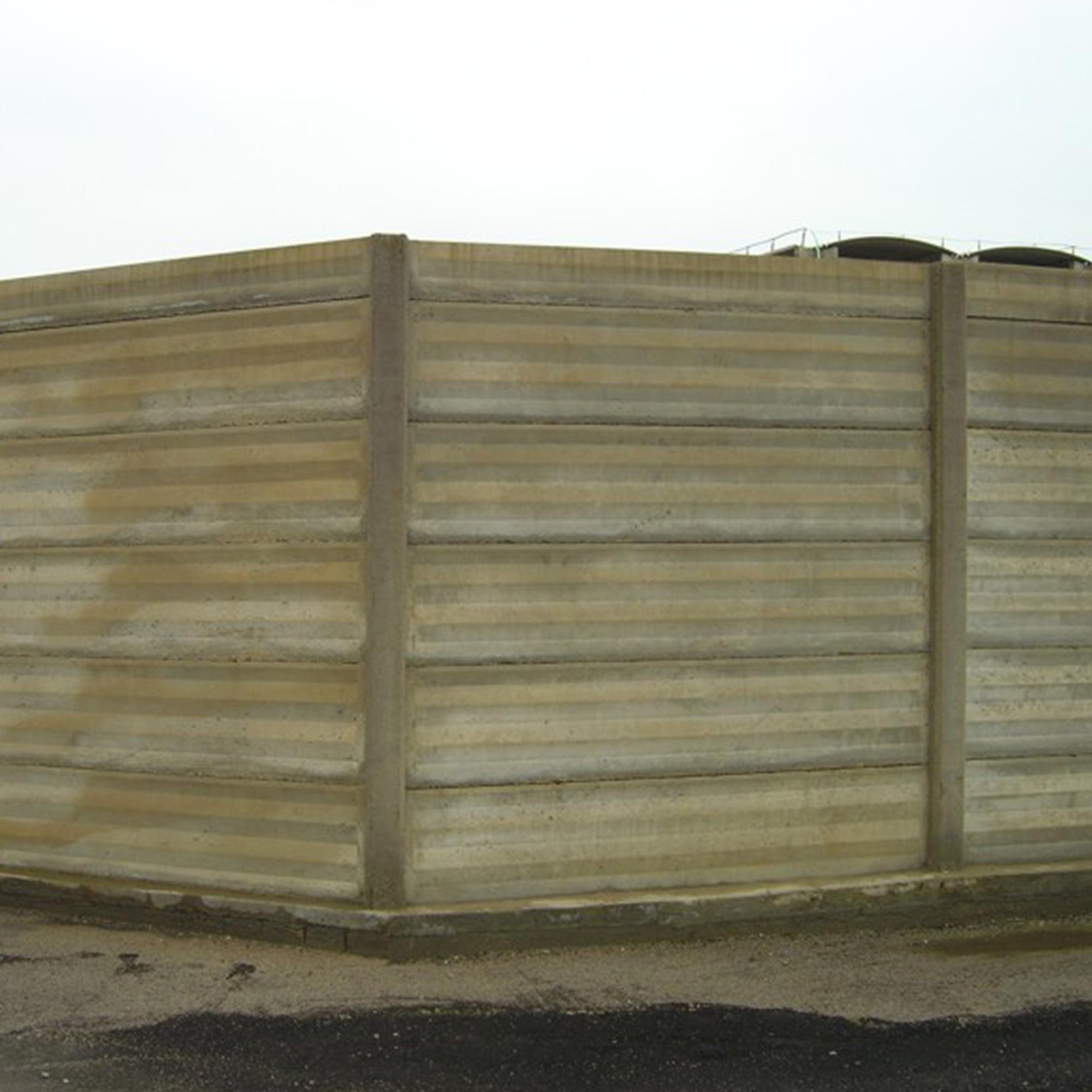 recinsione-1